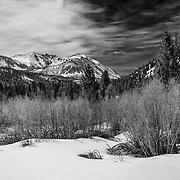 Mt. Morgan - Eastern Sierra - Black & White