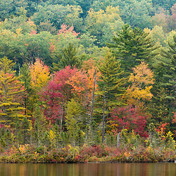 Fall colors on the shore of Coldrain Pond in New Durham, New Hampshire.