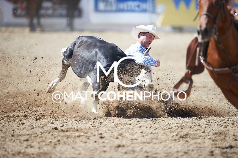 Steer wrestler Todd Suhn of Hermosa, SD competes at the Redding Rodeo in Redding, CA<br /> <br /> <br /> UNEDITED LOW-RES PREVIEW<br /> <br /> <br /> File shown may be an unedited low resolution version used as a proof only. All prints are 100% guaranteed for quality. Sizes 8x10+ come with a version for personal social media. I am currently not selling downloads for commercial/brand use.