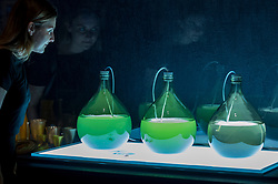 """© Licensed to London News Pictures. 11/09/2018. LONDON, UK. A visitor views """"Algae Lab"""", designed by Studio Klarenbeek & Dros at Atelier Luma, a factory line that 3D prints in algae, at a preview of the 87 nominees for the eleventh Beazley Designs of the Year exhibition and awards at the Design Museum in Kensington.  The exhibition runs 12 September to 6 January 2019 and celebrates the most innovative designs of the last year.  Photo credit: Stephen Chung/LNP"""