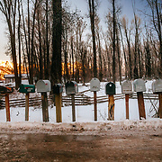 A row of mailboxes in the woods near Jackson, Wyoming.