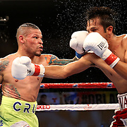 KISSIMMEE, FL - JULY 15: Orlando Cruz (L) punches Alejandro Valdez during a boxing match at the Kissimmee Civic Center on July 15, 2016 in Kissimmee, Florida. Cruz was the first professional boxer to announce himself as gay and recently lost four friends in the Pulse Nightclub shooting in Orlando, he dedicated this match to his lost friends and won the bout by TKO in the 7th round.  (Photo by Alex Menendez/Getty Images) *** Local Caption *** Orlando Cruz; Alejandro Valdez