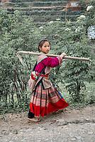 Vietnam. Haut Tonkin. Region de Bac Ha. Village de Ban Pho. Ethnie Hmong fleur. // Vietnam. North Vietnam. Bac Ha area. Ban Pho village. Flower Hmong ethnic group.