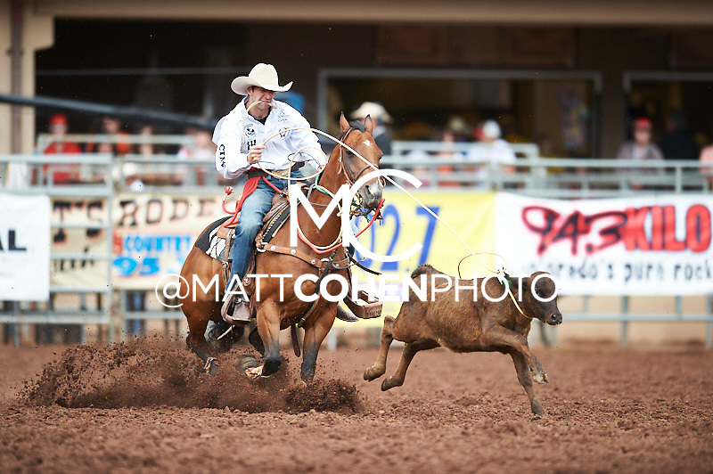Tie-down roper Shane Hanchey of Sulphur, LA competes at the Pikes Peak or Bust Rodeo in Colorado Springs, CO.<br /> <br /> <br /> UNEDITED LOW-RES PREVIEW<br /> <br /> <br /> File shown may be an unedited low resolution version used as a proof only. All prints are 100% guaranteed for quality. Sizes 8x10+ come with a version for personal social media. I am currently not selling downloads for commercial/brand use.