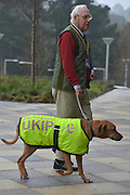 © Licensed to London News Pictures. 23/03/2013. Exeter, UK. A delegate arrives with his dog.  The UK Independence Party (UKIP) 2013 Spring Conference is held at the Great Hall, Exeter University today, Saturday 23rd March 2013. Support for the party is rising after success in the recent Eastleigh by-election, where UKIP came second behind the Liberal Democrats. Photo credit : Stephen Simpson/LNP