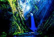 Waterfall and midday light rays -  Mt. Baker N.F., Washington.
