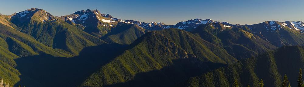 Graywolf Ridge panorama, evening light, August, view from Deer Park, Olympic National Park, Clallam County, Washington, USA