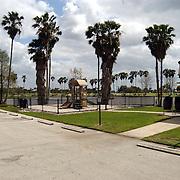 Vakantie Miami Amerika, palmbomen, Lake Harbouw, Clewiston