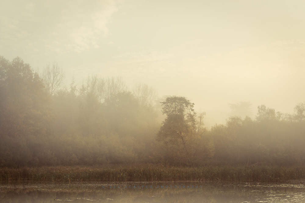 A bit of romanticism from Ickworth last week
