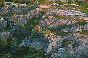 Rocks at sunset. Baie Verte Peninsula.<br />