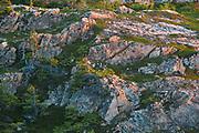 Rocks at sunset. Baie Verte Peninsula.<br />La Scie<br />Newfoundland & Labrador<br />Canada