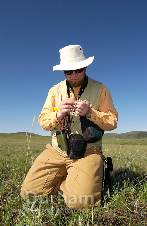 Preserve ecologist for The Nature Conservancy, Rob Taylor, inspects grassland plants during a weed survey on  Zumwalt Prairie Preserve. Keeping out foreign weeds, and allowing native vegetation to flourish is a Conservancy priority on the rare grassland. (Fully released)