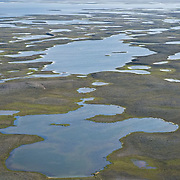 The tundra near Cambridge Bay, Canada covered in small ponds and lakes