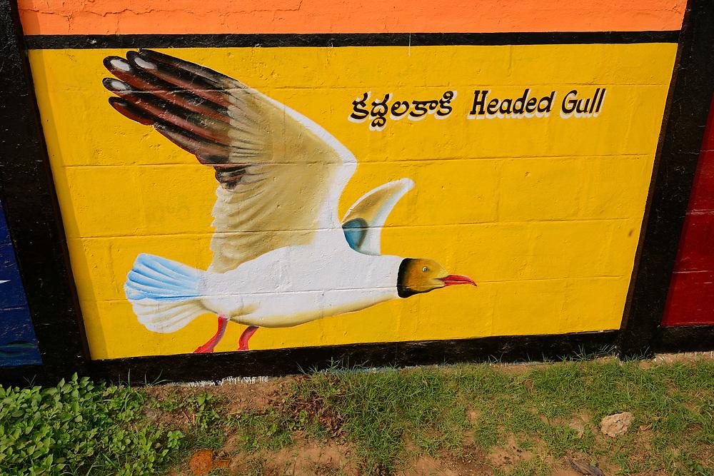 Wall paintings of birds, Pulicat Lake, Tamil Nadu, India