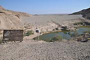 Israel, Aravah Desert desert oasis