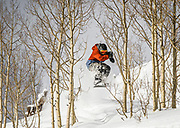 """SHOT 1/25/16 11:53:32 AM - Snowboarder Will Steller runs a tight line between aspen trees at Brighton Ski Resort on a powder day. Brighton is a ski area located in Big Cottonwood Canyon, 30 miles (48 km) from downtown Salt Lake City, Utah. Brighton Ski Resort was the first ski resort in Utah, and one of the first in the United States. Brighton was started in 1936 when members of the Alpine Ski Club built a rope tow from wire and an old elevator motor. Brighton claims to be a """"no-frills"""" resort whose sole business is to provide skiers and snowboarders with top-notch trails. Brighton is also known for its extensive backcountry access, visitors can purchase single ride lift tickets to reach the backcountry access gates at the top of the resort. Although the terrain inbounds at Brighton can rival that of the backcountry, Brighton is known for its cliffs, chutes, bowls and natural features. (Photo by Marc Piscotty / © 2016)"""