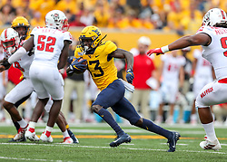 Sep 14, 2019; Morgantown, WV, USA; West Virginia Mountaineers wide receiver Sam James (13) catches a pass and runs for a touchdown during the first quarter against the North Carolina State Wolfpack at Mountaineer Field at Milan Puskar Stadium. Mandatory Credit: Ben Queen-USA TODAY Sports