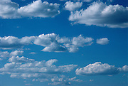 A blue sky with white clouds.
