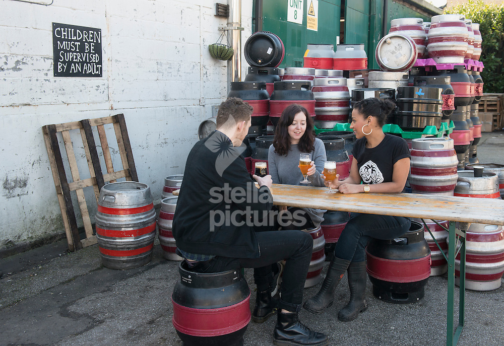 General view as people enjoy a beer at Wild Card Brewery.<br /> Picture by Daniel Hambury/Stella Pictures Ltd +44 7813 022858<br /> 16/02/2016