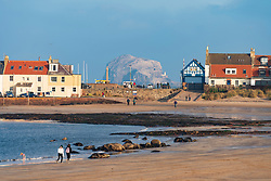 View of Bass Rock and North Berwick harbour buildings from West Bay beach at low tide on autumn afternoon, East Lothian,Scotland ,UK.