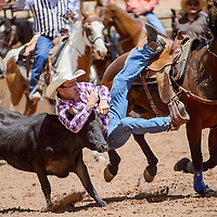 Steer wrestler Jacob Antone slides from his saddle as he tackles his steer during the Gallup Inter-tribal Indian Ceremonial rodeo Friday at Red Rock Park.