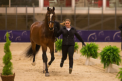 Jebsen Lilann (NOR) - Pro Set <br /> Reem Acra FEI World Cup Goteborg 2013<br /> © Dirk Caremans