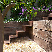 Modern Garden 697