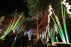 © Licensed to London News Pictures. 14/01/2016. London, UK. The Garden of Light installation fills Leicester Square. Lumiere London is a major new light festival that, over four evenings, brings together<br /> some of the world's most exciting artists working with light utilising large-scale video-mapped projections, interactive pieces and installations. Photo credit: Peter Macdiarmid/LNP