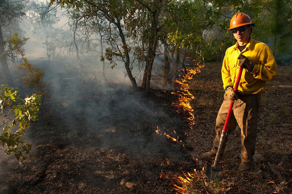Prescribed Burn in longleaf pine forest.<br /> The Orianne Indigo Snake Preserve<br /> Telfair County, Georgia<br /> USA