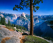 Yosemite Valley from Washburn Point, with pine tree, © David A. Ponton
