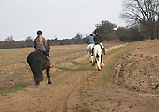 Horse riding, Suffolk farming landscape scenery, East Anglia, England