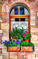 """Beautiful flowers outside the window in Assisi""…<br />