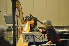 Multi-Level Harp Master Class