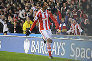 Stoke city's Steven N'Zonzi celebrates after scoring his side 2nd goal during the Barclays Premier league, Stoke city v Sunderland at the Britannia stadium in Stoke on Trent, England on Saturday 23rd Nov 2013. pic by Jeff Thomas, Andrew Orchard sports photography,