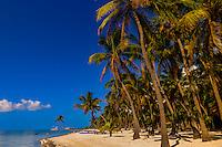The Moorings Village Pearl of Florida Keys resort, Islamorada Key, Florida Keys, Florida USA