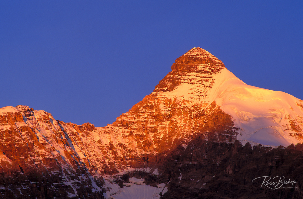 Dawn light on the south face of Mount Athabasca, Columbia Icefields area, Jasper National Park, Alberta, Canada