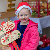 Ellie Eilis Griffin from Ennis with some crafts on offer at the Treacy's West County Winter Wonderland on Saturday afternoon