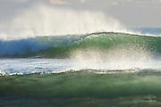 Late afternoon sun illuminating barreling waves at Muriwai Beach, north of Auckland, New Zealand.