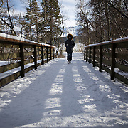 Walking the Mammoth Lakes Town Loop trail during winter which traverses the nearly frozen Mammoth Creek and provides views of Mammoth Mountain. Please contact legal[at]toddbigelowphotography.com with your licensing request.