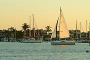 Newport Beach California Lifestyle