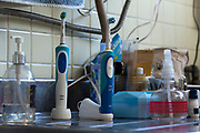 electric toothbrushes and other things on kitchen counter