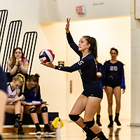 Girls High School Volleyball 2019