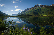 Tern Lake, Kenai Peninsula, Alaska, USA<br /> <br /> Photographer: Christina Sjögren<br /> <br /> Copyright 2019, All Rights Reserved