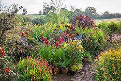 Hot borders in the brick garden at Glebe Cottage. Gladiolus in pots. Ricinus communis, Dahlia 'Bishop of Llandaff', Crocosmia and Rudbeckia fulgida var. deamii AGM