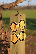 Public footpath direction arrows sign post, Suffolk, England, UK