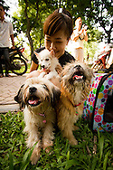 Portrait of young vietnamese lady with her dog, she holds her puppy in her arms, take care it and smiles happily, Lenin park, hanoi, Vietnam, Asia.
