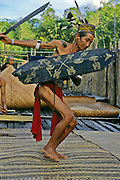 Traditional hornbill dance, Iban tribe, former headhunters, rainforest Skrang River, Sarawak, Borneo, Malaysia.