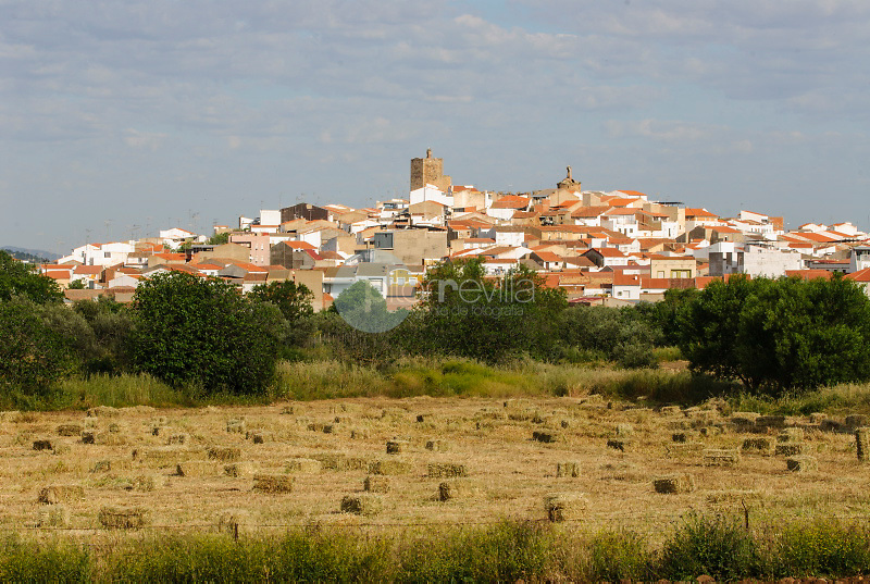 Zalamea de la Serena.Badajoz ©Antonio Real Hurtado / PILAR REVILLA
