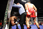 Boxen: WBO-Europameisterschaft, Cruisergewicht, Bielefeld, 10.07.2021<br /> Leon Harth (GER) - Raad Rashid (GER)<br /> © Torsten Helmke