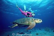 diver and loggerhead sea turtle, Caretta caretta, Bahamas ( Western Atlantic Ocean ) MR 288
